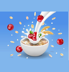 Oat flakes with cranberry oatmeal in milk vector