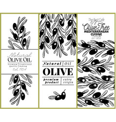 olive tree banner set hand drawn vintage vector image