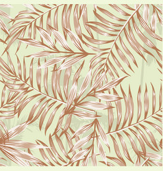 palm leaves brown pattern vector image