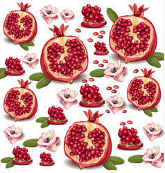 Pomegranate realistic pattern background vector