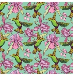 Seamless pattern Colibri and flowers on green vector