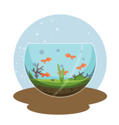 transparent aquarium with golden fish vector image