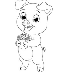 young funny little piggy vector image