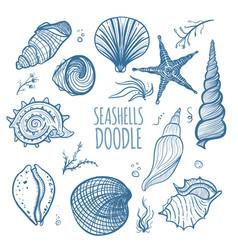 set of seashells on white background vector image vector image