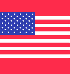 Star and strip american flag happy independence vector