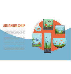 aquariums with golden fish vector image