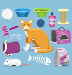 cat toys pets accessories for pussycats vector image