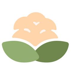 Cauliflower flat icon vector