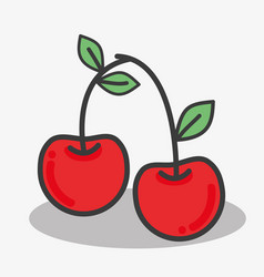 Delicious cherry tasty fruit icon vector