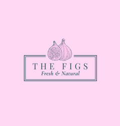 fig with a slice abstract sign symbol vector image