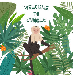 monkey white headed capuchin in jungles leaves vector image