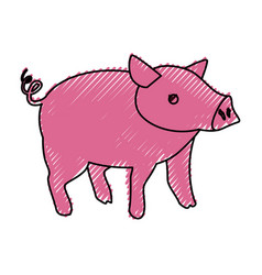 Pig farm animal vector