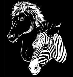 white silhouette zebra and horse heads profile vector image