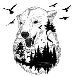 Hand drawn bear portrait wildlife concept vector