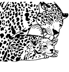 Mother and child leopard vector image vector image