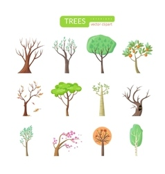 Set of Isolated Trees Design Flat vector image vector image