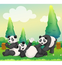 Three pandas playing in the park vector