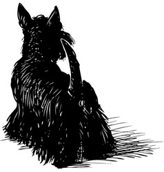 Drawing a black scottish terrier vector