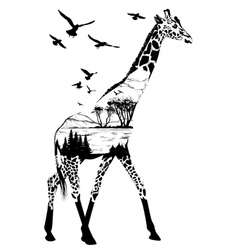 Giraffe for your design wildlife concept vector