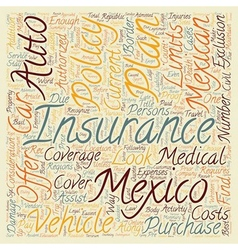 Mexican Insurance How To Choose A Plan text vector