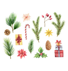 watercolor christmas set with fir branches vector image