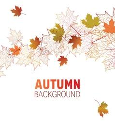 maple leaf contour background vector image