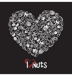 nuts icon as heart vector image vector image