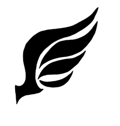 wing concept for logo vector image