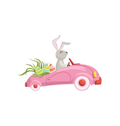 cute bunny driving pink vintage car decorated with vector image