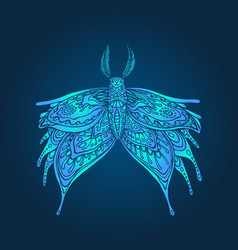 fantasy mystical butterfly blue color page vector image