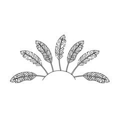 Figure beauty diadem of feathers design decoration vector