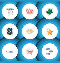 Flat icon sea set of cancer medusa tuna and vector
