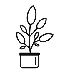 leaf houseplant pot icon outline style vector image