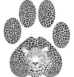 leopard footprint vector image