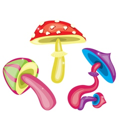 Toxic mushrooms vector