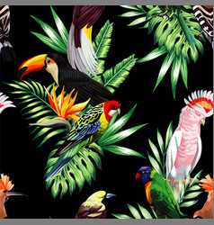 tropical birds and palm leaves seamless black vector image