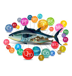 Microelements vitamins minerals in fish vector