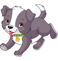 puppy runs vector image