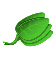 Spinach icon cartoon style vector