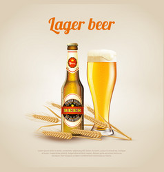 lager beer background vector image vector image