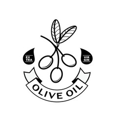 olive oil logo with ribbon vector image vector image