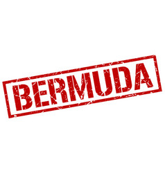Bermuda red square stamp vector