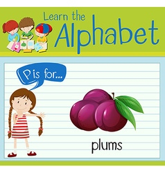Flashcard letter P is for plumbs vector image
