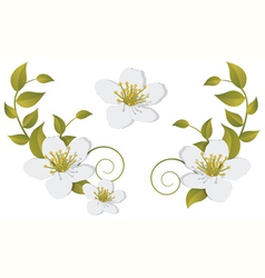 Flowering branch design elements vector image