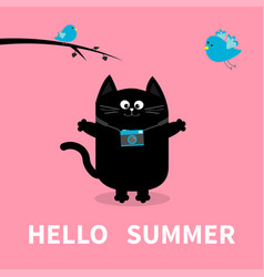 Hello summer black cat photo camera bird vector