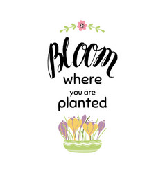 lettering quote about flowers gardening banner vector image