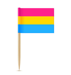 Pansexual pride flag movement lgbtq toothpick flag vector