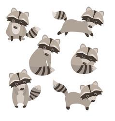 set of cute raccoons set of cute raccoons vector image