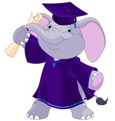 Elephant Graduates vector image vector image