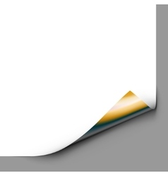 Gold Curled Corner vector image vector image